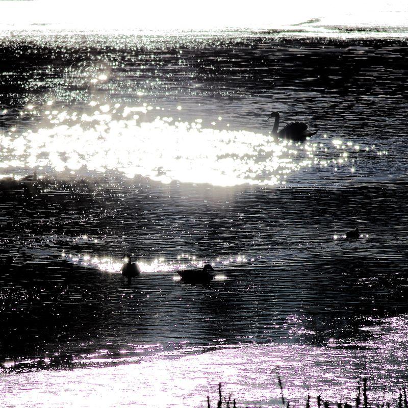 Vintersolnedgang på Glitterdammen